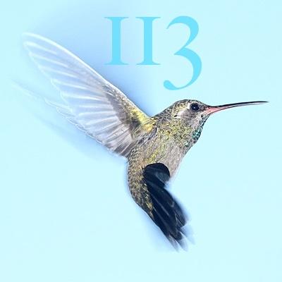 Numerología 113 / Significado del número 113