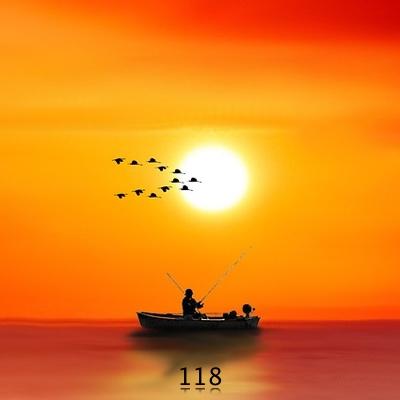 Numerología 118 / Significado del número 118