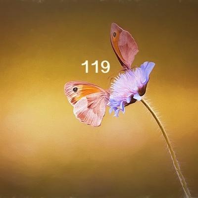 Numerología 119 / Significado del número 119