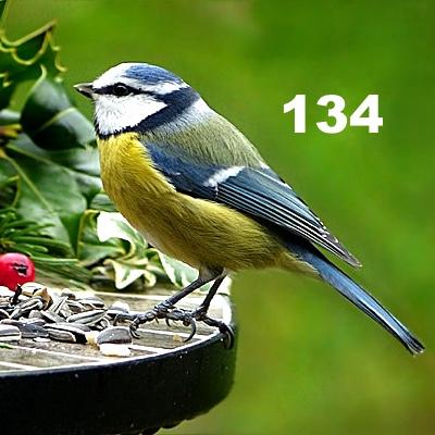 Numerología 134 / Significado del número 134