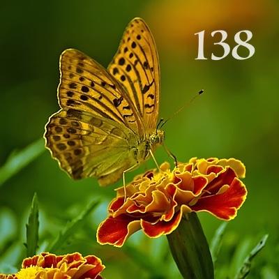 Numerología 138 / Significado del número 138