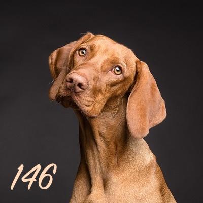 Numerología 146 / Significado del número 146