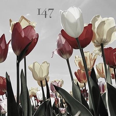 Numerología 147 / Significado del número 147