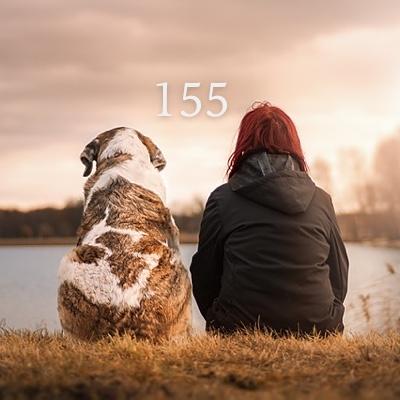 Numerología 155 / Significado del número 155