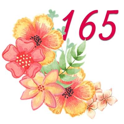 Numerología 165 / Significado del número 165