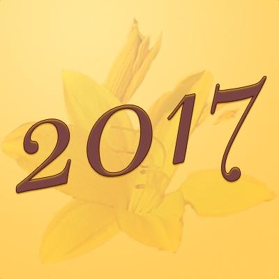 Numerología 2017 / Significado del número 2017