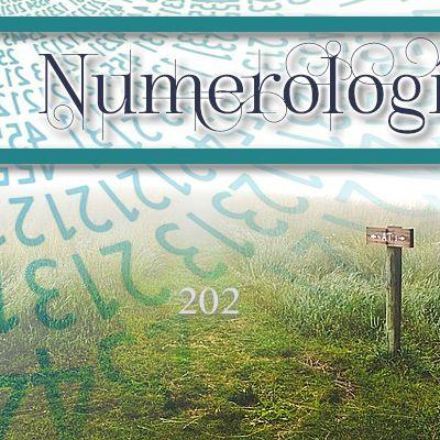 Numerología 202 / Significado del número 202