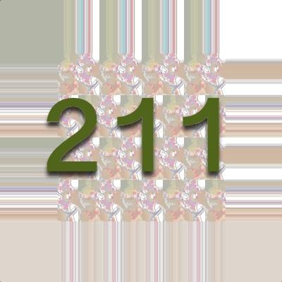 Numerología 211 / Significado del número 211