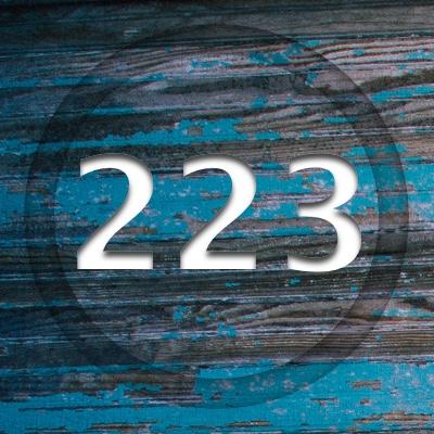 Numerología 223 / Significado del número 223