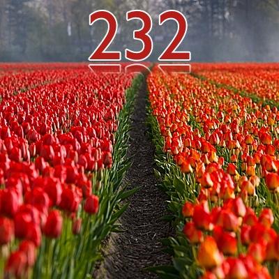 Numerología 232 / Significado del número 232