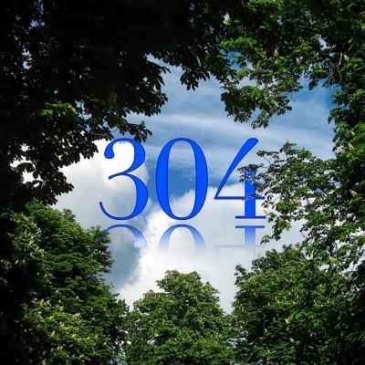 Numerología 304 / Significado del número 304