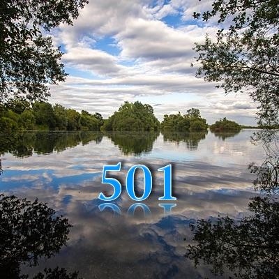 Numerología 501 / Significado del número 501