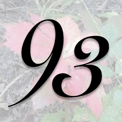 Numerología 93 / Significado del número 93