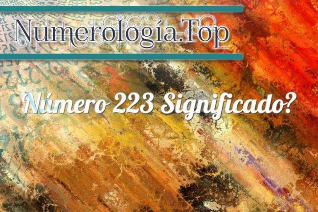 Número 223 Significado