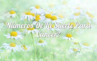 Números de la suerte para Cancer