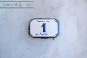 Camino de vida Numero 1