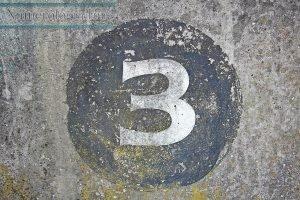 Camino de vida Numero 3