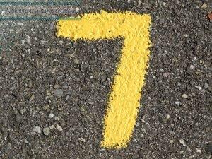 Camino de vida Numero 7