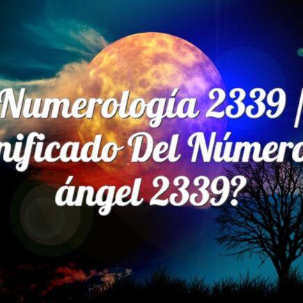 Numerología 2339 / Significado del número de ángel 2339