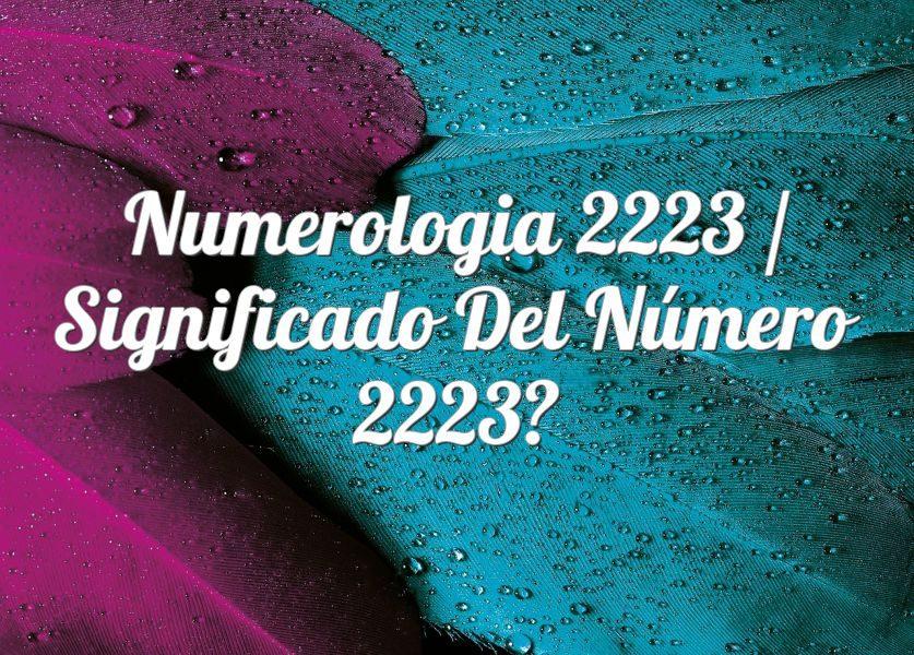 Numerología 2223 / Significado del número 2223