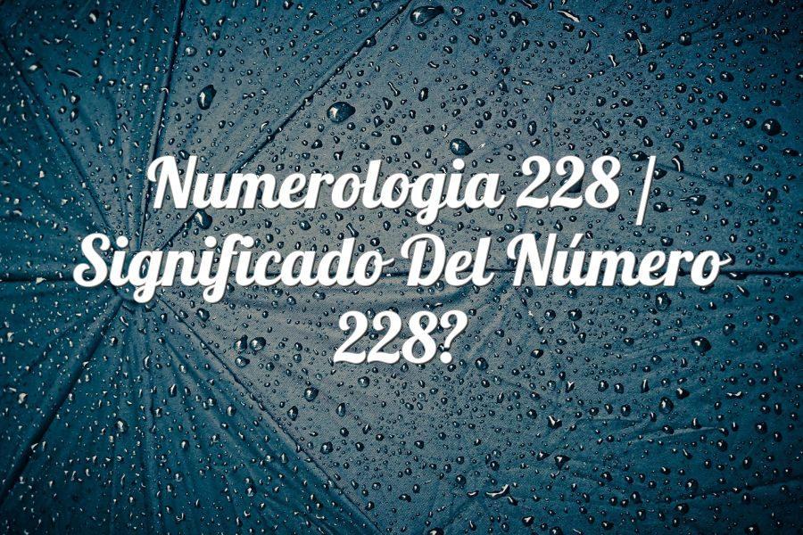 Numerología 228 / Significado del número 228