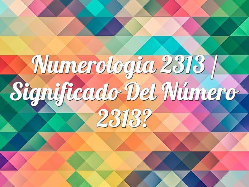 Numerología 2313 / Significado del número 2313
