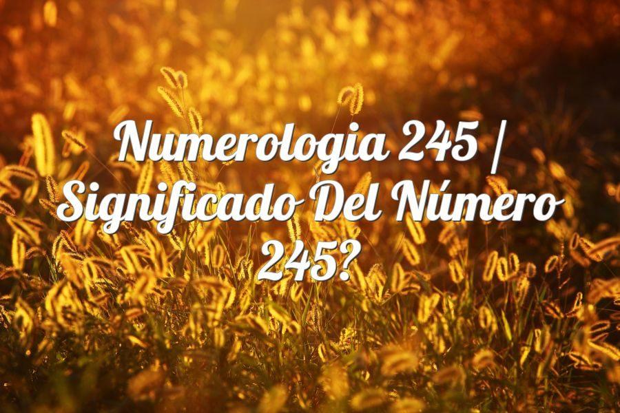 Numerología 245 / Significado del número 245