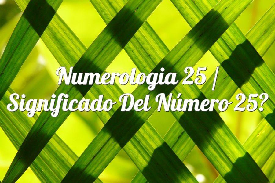 Numerología 25 / Significado del número 25