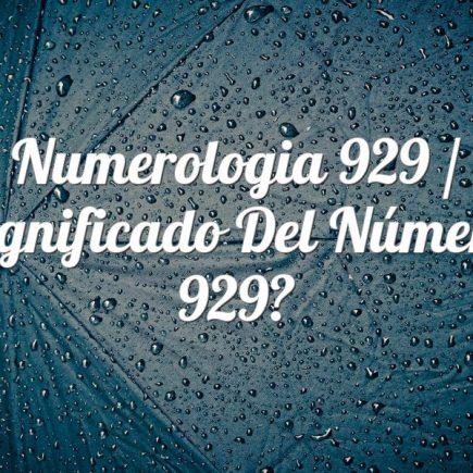 Numerologia 929 / Significado del número 929