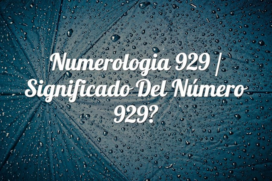 Numerología 929 / Significado del número 929