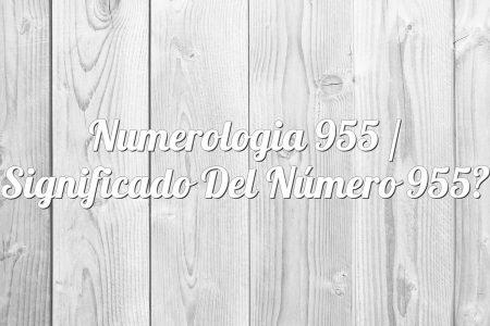 Numerologia 955 / Significado del número 955