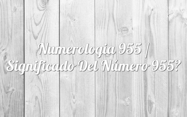 Numerología 955 / Significado del número 955